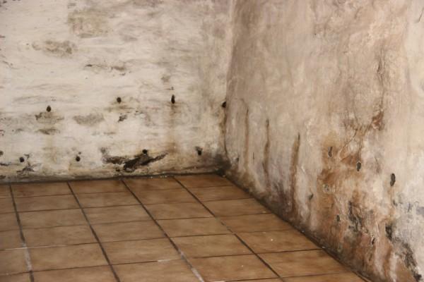 Traitement humidité Saumur